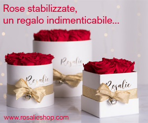 Rosalie Shop Rose Stabilizzate